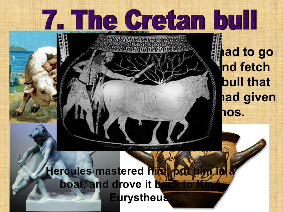 Hercules had to go to Crete and fetch the white bull that Poseidon had given to Minos.