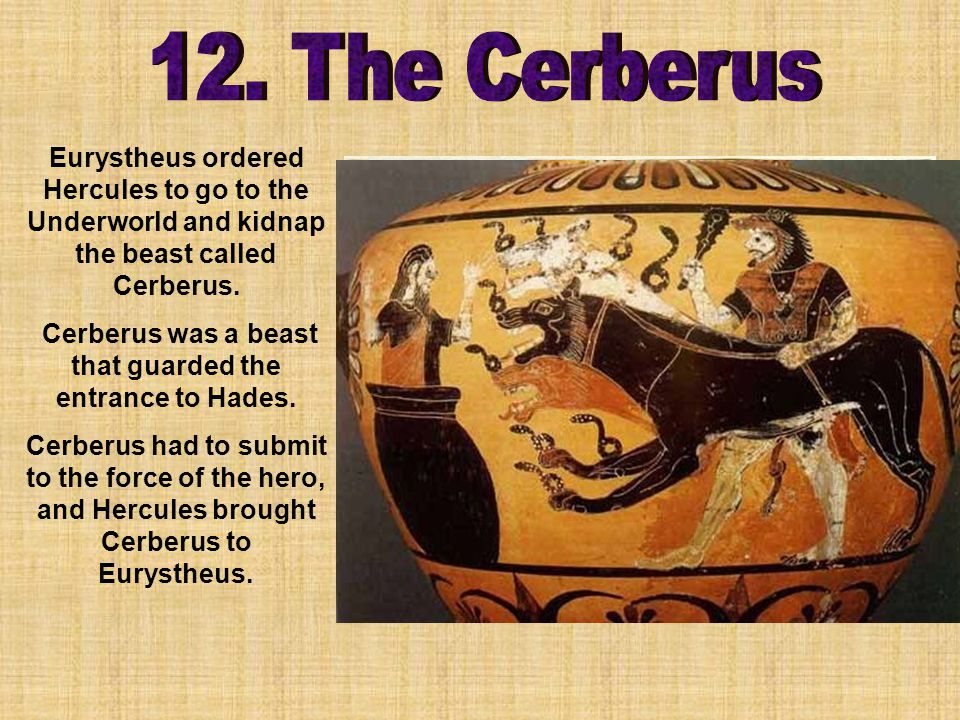 Eurystheus ordered Hercules to go to the Underworld and kidnap the beast called Cerberus.