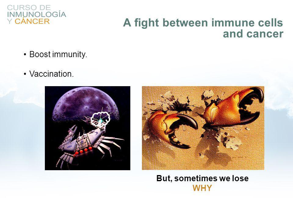 Mechanisms of tumor cells: –Antigen loss.–Production and release of immunosuppressive factors.