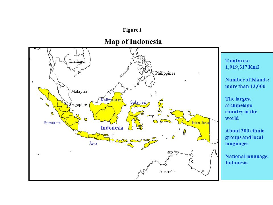 Figure 2. Structure of Indonesian Government