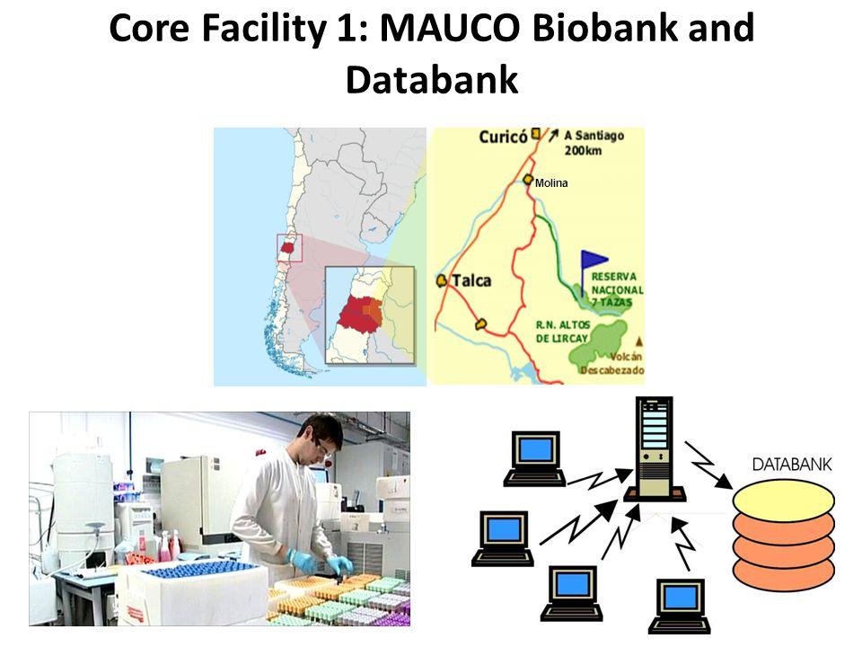 Core Facility 1: MAUCO Biobank and Databank Molina