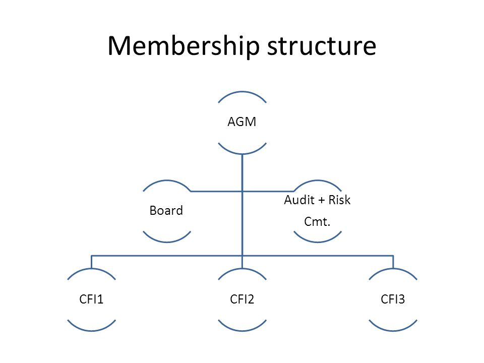 Membership structure AGM CFI1CFI2CFI3 Board Audit + Risk Cmt.