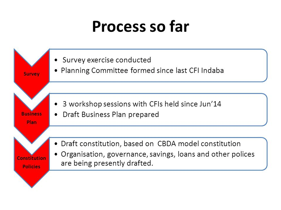 Process so far Survey Survey exercise conducted Planning Committee formed since last CFI Indaba Business Plan 3 workshop sessions with CFIs held since Jun'14 Draft Business Plan prepared Constitution Policies Draft constitution, based on CBDA model constitution Organisation, governance, savings, loans and other polices are being presently drafted.