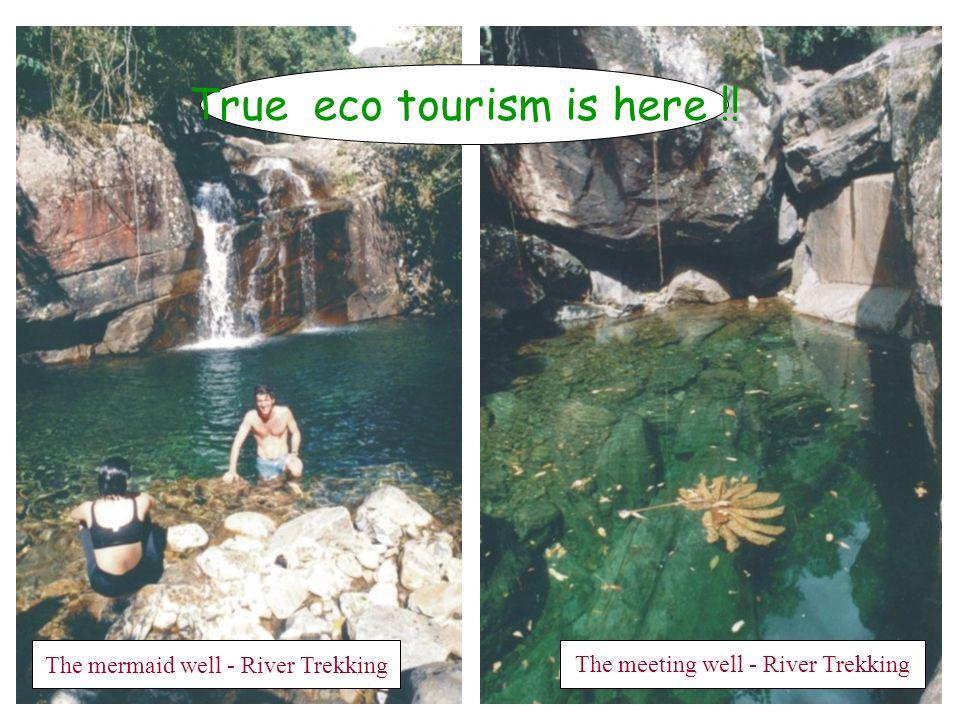 Rogério's waterfall - River Trekking