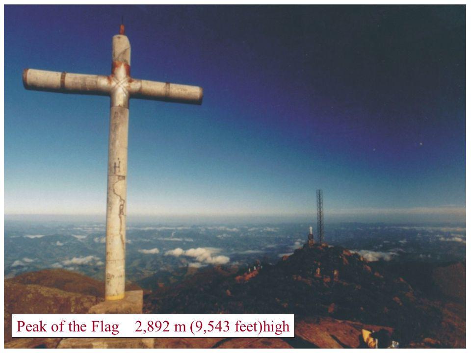"""Camp 2 - """" Terreirão"""" - 2,400 m (7,920 feet)high"""