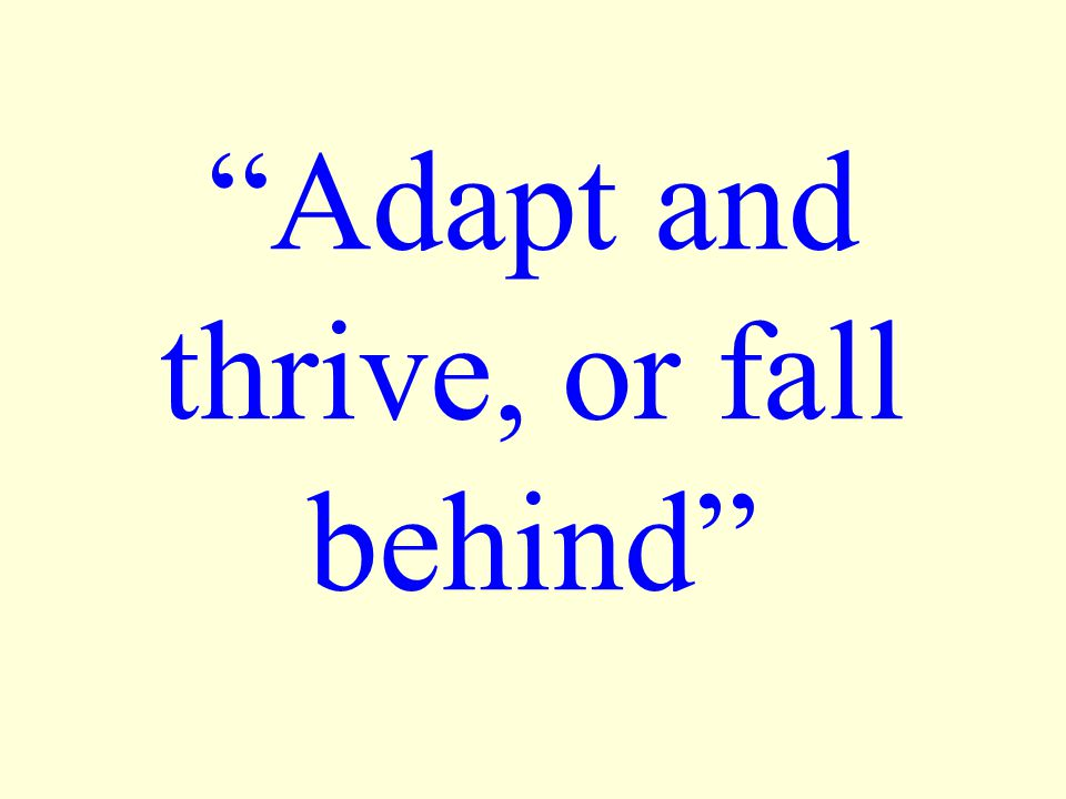 Adapt and thrive, or fall behind