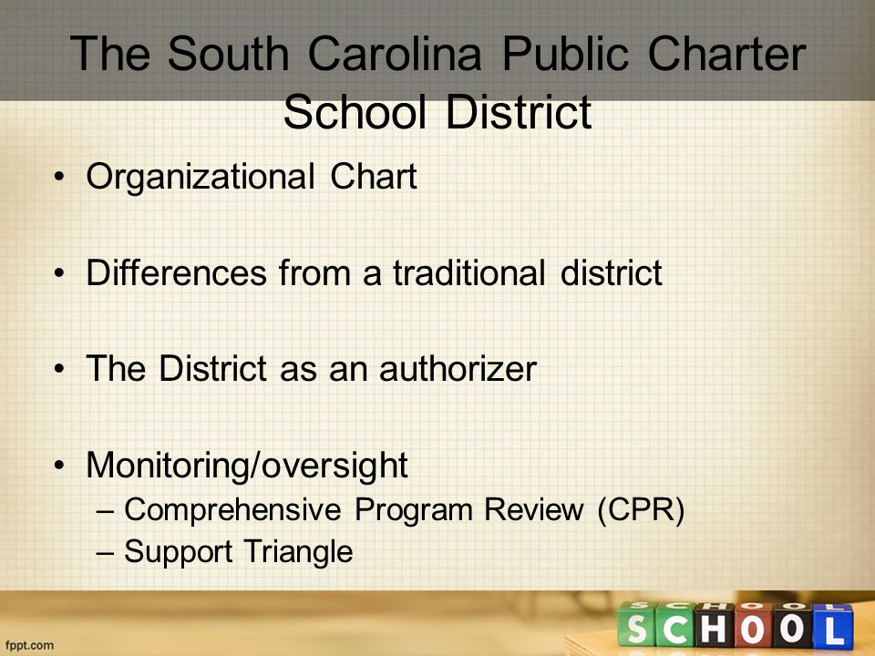 Organizational Chart Differences from a traditional district The District as an authorizer Monitoring/oversight –Comprehensive Program Review (CPR) –Support Triangle The South Carolina Public Charter School District