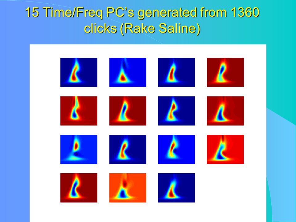 15 Time/Freq PC's generated from 1360 clicks (Rake Saline)