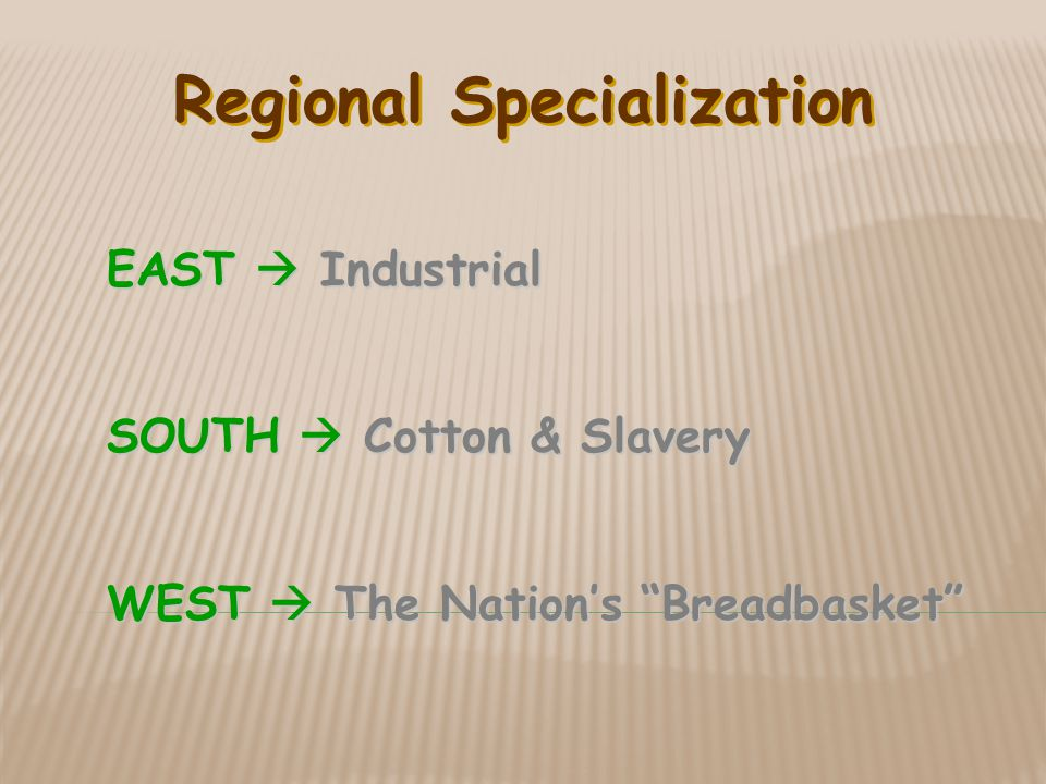 Regional Specialization EAST  Industrial SOUTH  Cotton & Slavery WEST  The Nation's Breadbasket