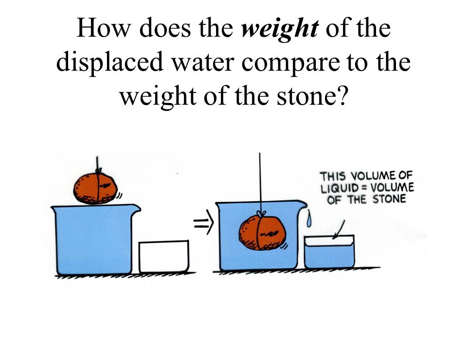 What is the weight of the displaced water equal to