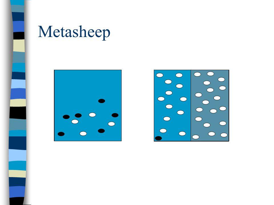 Metasheep