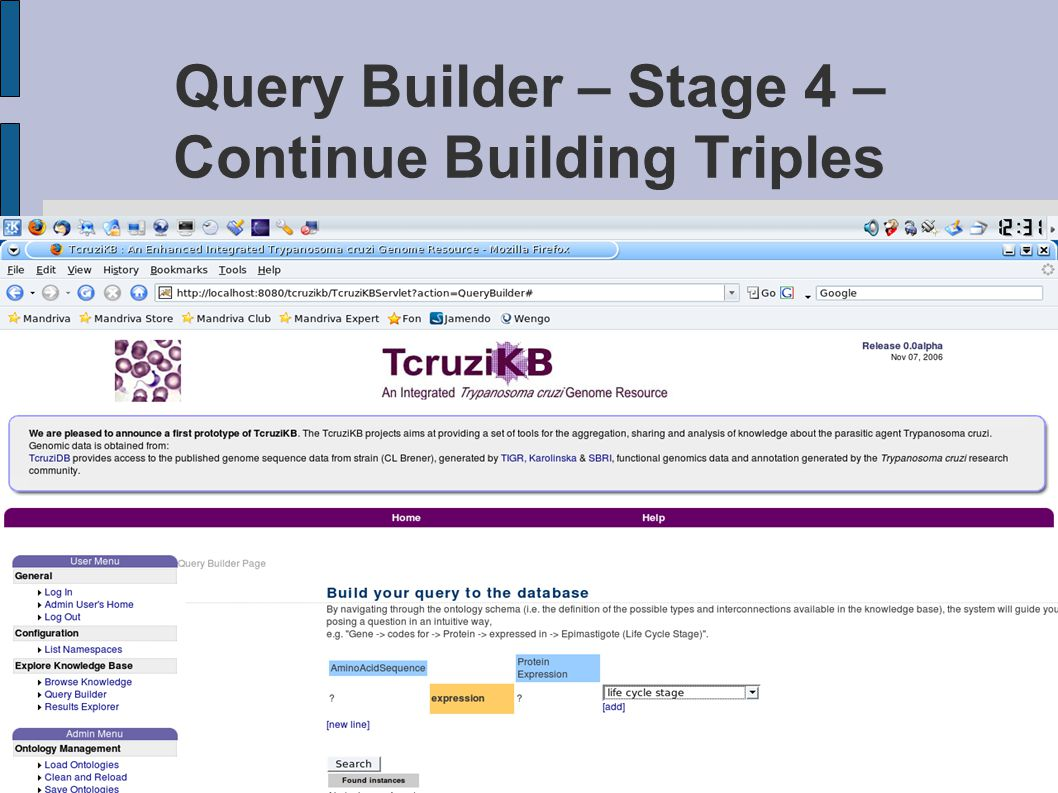 Query Builder – Stage 4 – Continue Building Triples