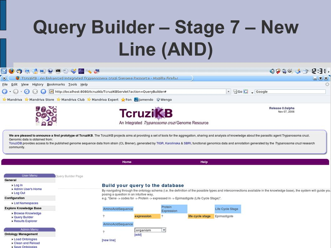 Query Builder – Stage 7 – New Line (AND)