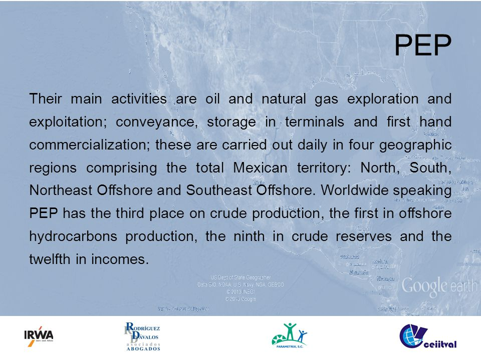 PEP Their main activities are oil and natural gas exploration and exploitation; conveyance, storage in terminals and first hand commercialization; the