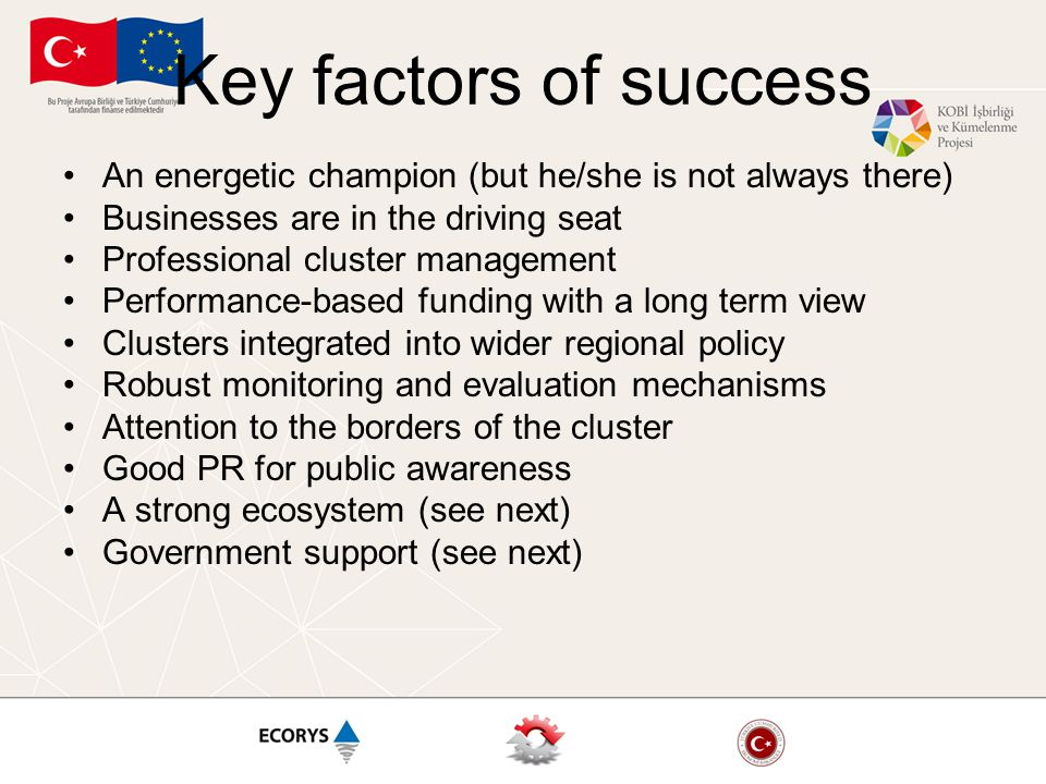 Key factors of success An energetic champion (but he/she is not always there) Businesses are in the driving seat Professional cluster management Perfo