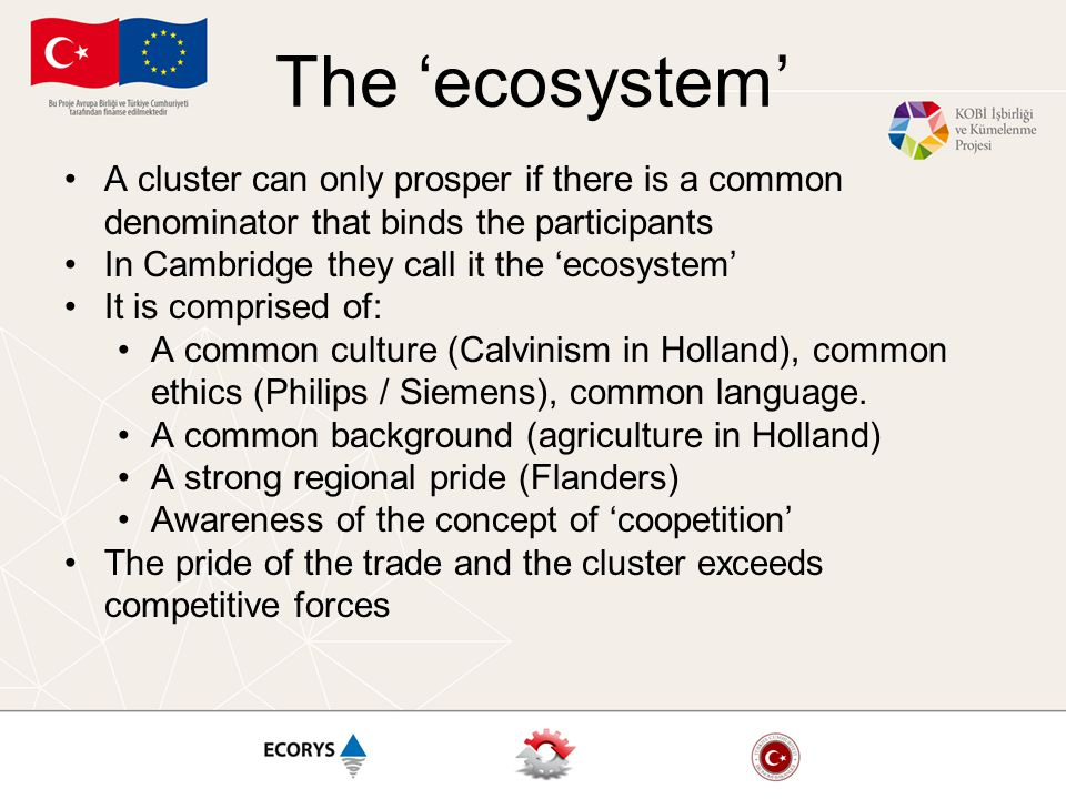 The 'ecosystem' A cluster can only prosper if there is a common denominator that binds the participants In Cambridge they call it the 'ecosystem' It i