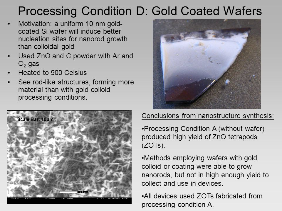 Processing Condition D: Gold Coated Wafers Motivation: a uniform 10 nm gold- coated Si wafer will induce better nucleation sites for nanorod growth than colloidal gold Used ZnO and C powder with Ar and O 2 gas Heated to 900 Celsius See rod-like structures, forming more material than with gold colloid processing conditions.