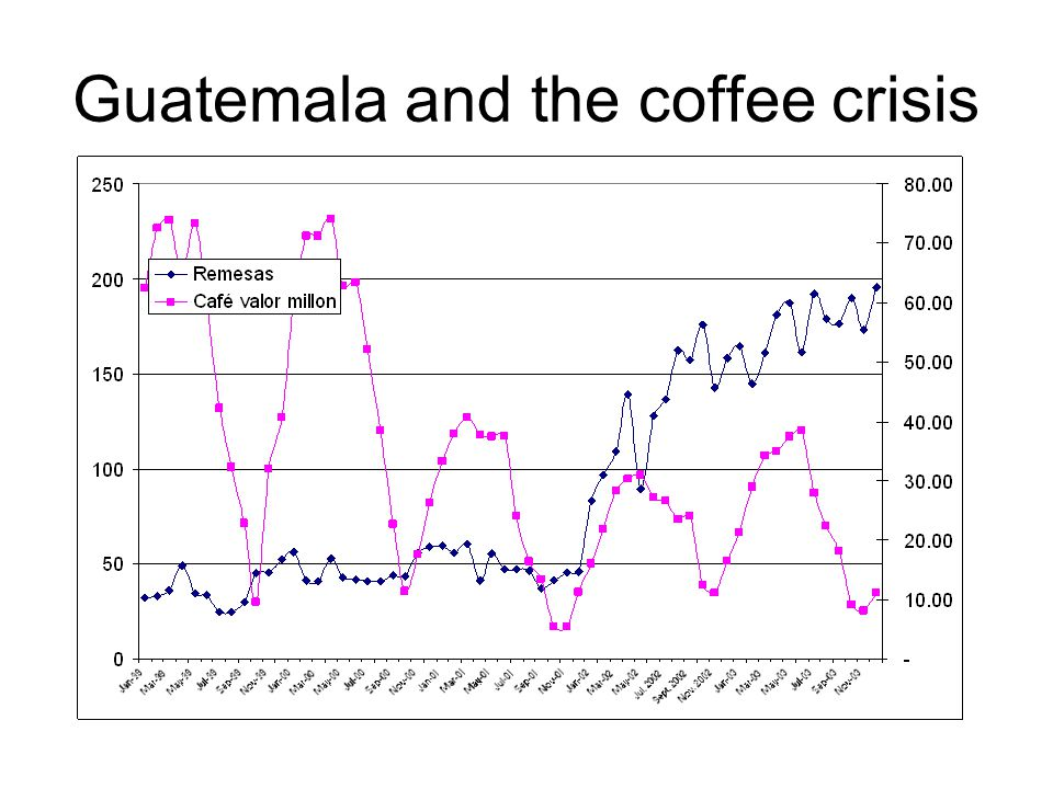 Guatemala and the coffee crisis