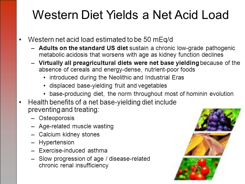 Western Diet Yields a Net Acid Load Western net acid load estimated to be 50 mEq/d –Adults on the standard US diet sustain a chronic low-grade pathogenic metabolic acidosis that worsens with age as kidney function declines –Virtually all preagricultural diets were net base yielding because of the absence of cereals and energy-dense, nutrient-poor foods introduced during the Neolithic and Industrial Eras displaced base-yielding fruit and vegetables base-producing diet, the norm throughout most of hominin evolution Health benefits of a net base-yielding diet include preventing and treating: –Osteoporosis –Age-related muscle wasting –Calcium kidney stones –Hypertension –Exercise-induced asthma –Slow progression of age / disease-related chronic renal insufficiency