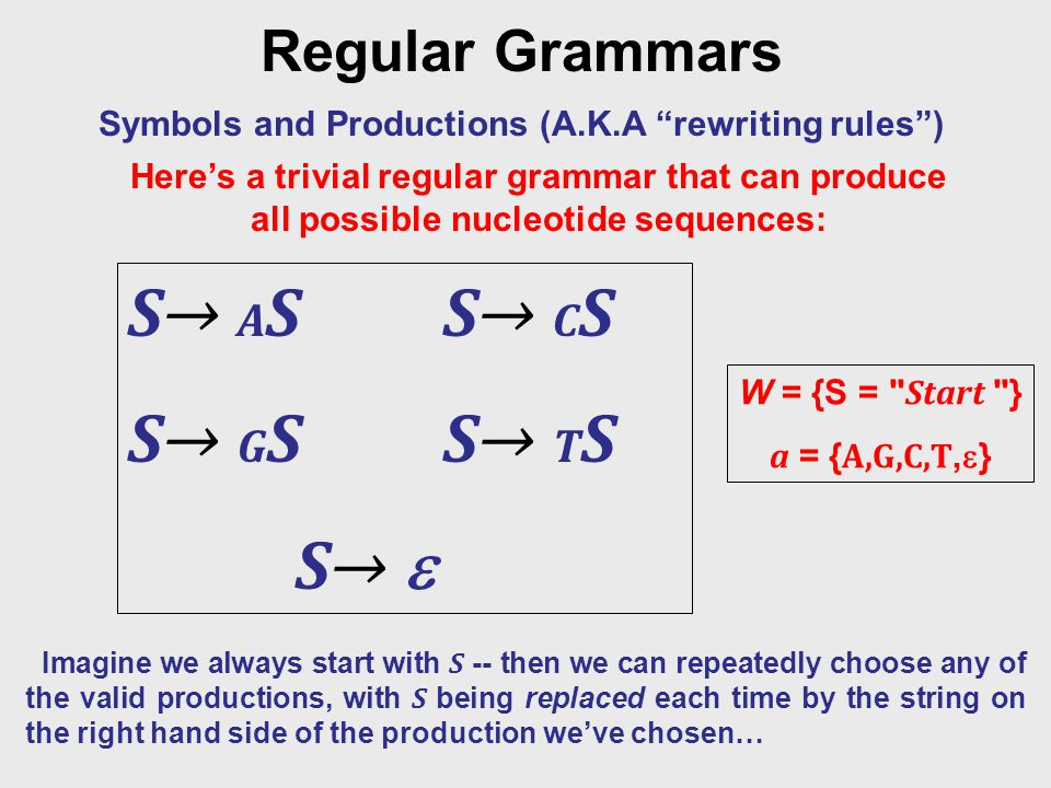 Regular Grammars Symbols and Productions (A.K.A rewriting rules ) W = {S = Start } a = { A,G,C,T,  } S→ A SS→ C S S→ G SS→ T S S→  Imagine we always start with S -- then we can repeatedly choose any of the valid productions, with S being replaced each time by the string on the right hand side of the production we've chosen… Here's a trivial regular grammar that can produce all possible nucleotide sequences: