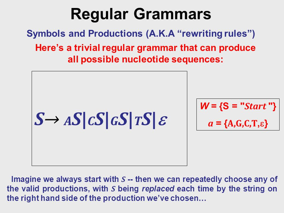 Regular Grammars Symbols and Productions (A.K.A rewriting rules ) W = {S = Start } a = { A,G,C,T,  } S→ AS|CS|GS|TS|S→ AS|CS|GS|TS| Imagine we always start with S -- then we can repeatedly choose any of the valid productions, with S being replaced each time by the string on the right hand side of the production we've chosen… Here's a trivial regular grammar that can produce all possible nucleotide sequences:
