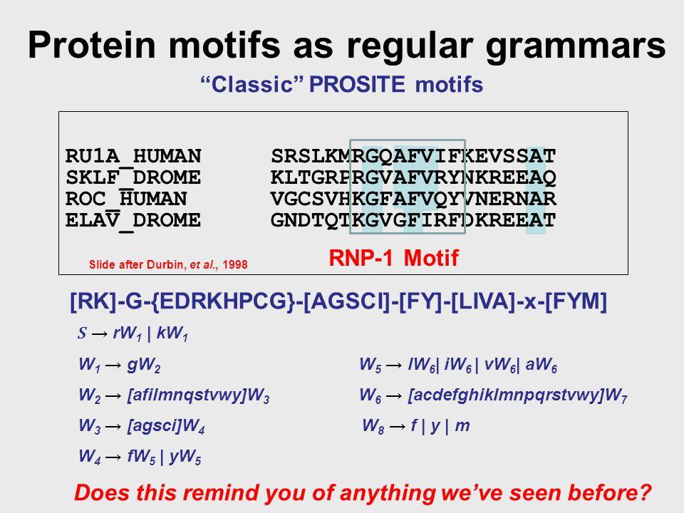 Protein motifs as regular grammars Classic PROSITE motifs S → rW 1 | kW 1 W 1 → gW 2 W 2 → [afilmnqstvwy]W 3 W 3 → [agsci]W 4 W 4 → fW 5 | yW 5 W 5 → lW 6 | iW 6 | vW 6 | aW 6 W 6 → [acdefghiklmnpqrstvwy]W 7 W 8 → f | y | m RU1A_HUMANSRSLKMRGQAFVIFKEVSSAT SKLF_DROMEKLTGRPRGVAFVRYNKREEAQ ROC_HUMANVGCSVHKGFAFVQYVNERNAR ELAV_DROMEGNDTQTKGVGFIRFDKREEAT RNP-1 Motif Slide after Durbin, et al., 1998 [RK]-G-{EDRKHPCG}-[AGSCI]-[FY]-[LIVA]-x-[FYM] Does this remind you of anything we've seen before?
