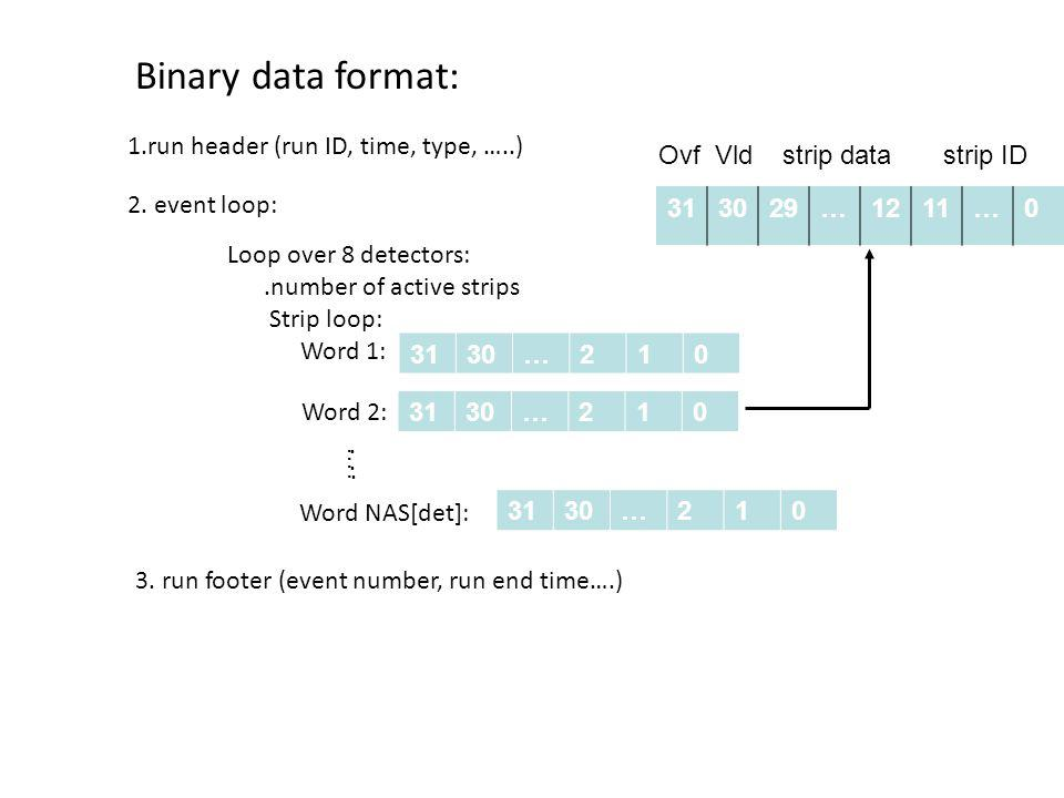 Binary data format: 1.run header (run ID, time, type, …..) 2. event loop: Loop over 8 detectors:.number of active strips Strip loop: Word 1: 3130…210
