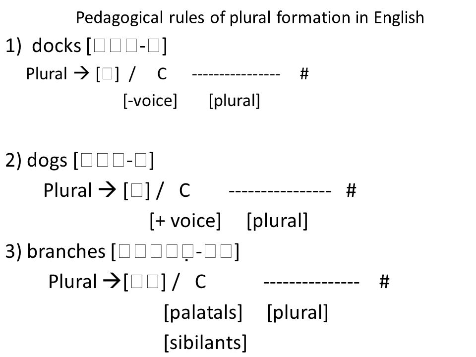 Pedagogical rules of plural formation in English 1)docks [  -  ] Plural  [  ] / C ---------------- # [-voice] [plural] 2) dogs [  -  ] Plura