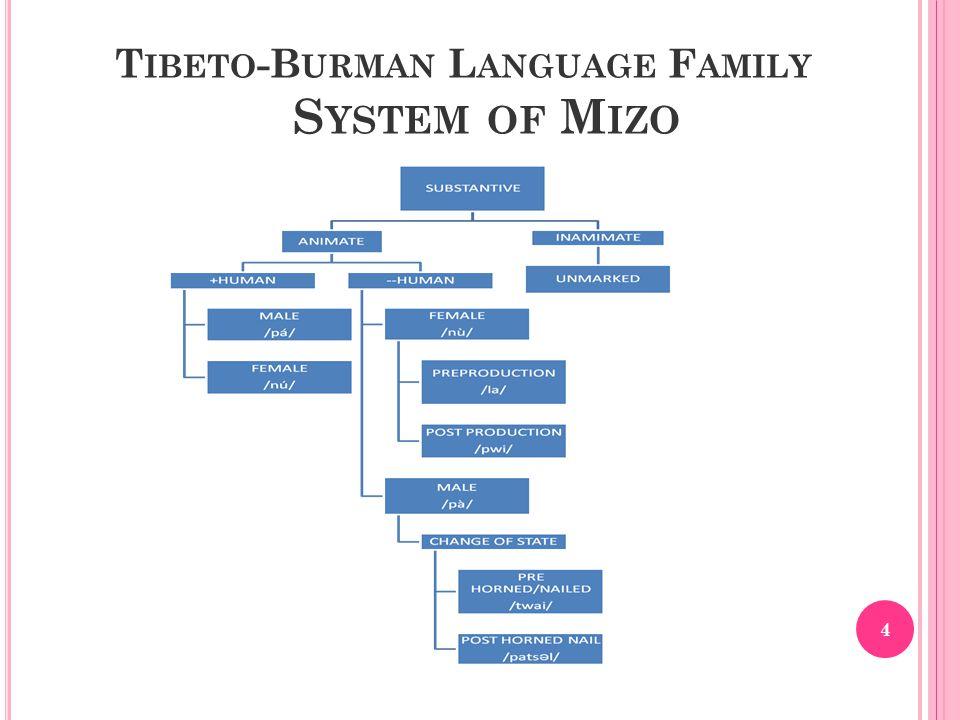 T IBETO -B URMAN L ANGUAGE F AMILY S YSTEM OF M IZO 4