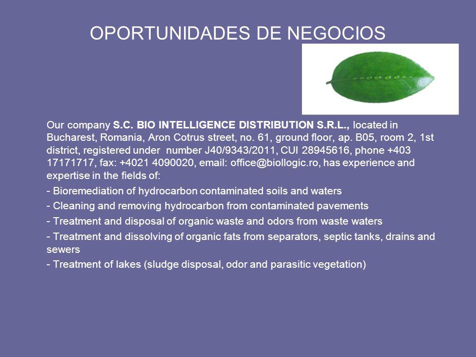 OPORTUNIDADES DE NEGOCIOS Our company S.C.