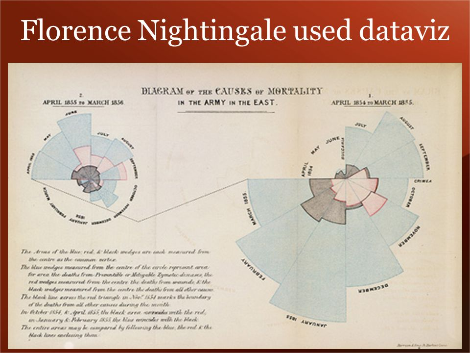 Florence Nightingale used dataviz