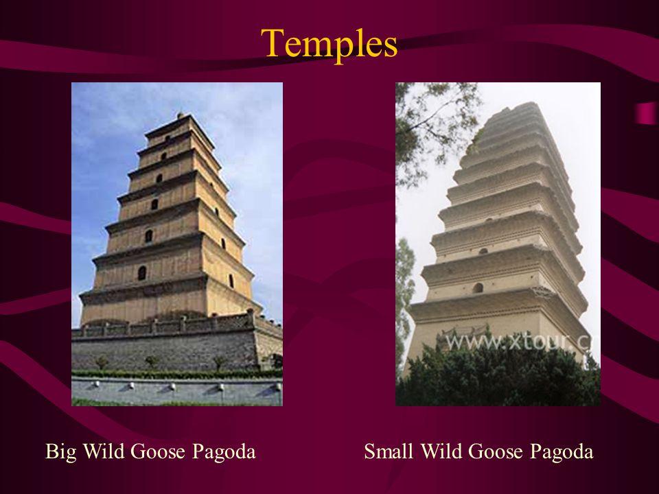 Temples Big Wild Goose PagodaSmall Wild Goose Pagoda