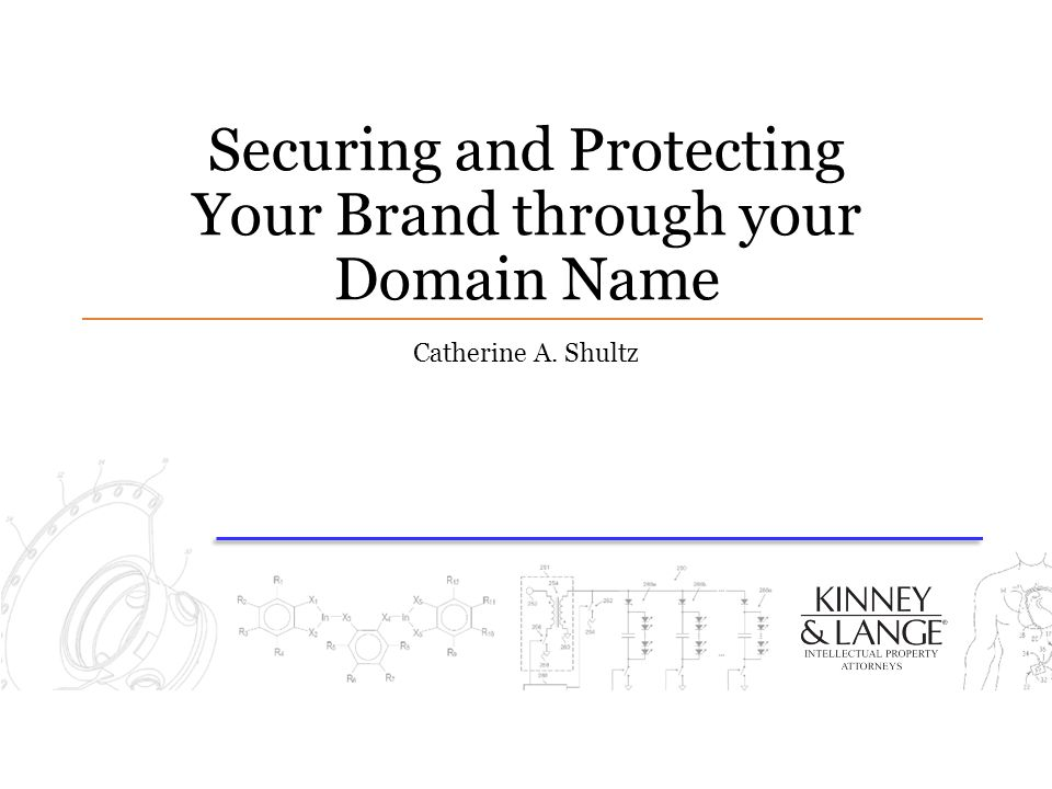 Securing and Protecting Your Brand through your Domain Name Catherine A. Shultz