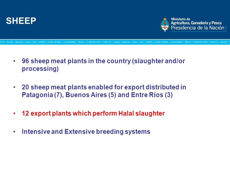 Título: Tipografía Arial / Versión: bold Cuerpo 16 a 18 / Color blanco 96 sheep meat plants in the country (slaughter and/or processing) 20 sheep meat plants enabled for export distributed in Patagonia (7), Buenos Aires (5) and Entre Ríos (3) 12 export plants which perform Halal slaughter Intensive and Extensive breeding systems SHEEP