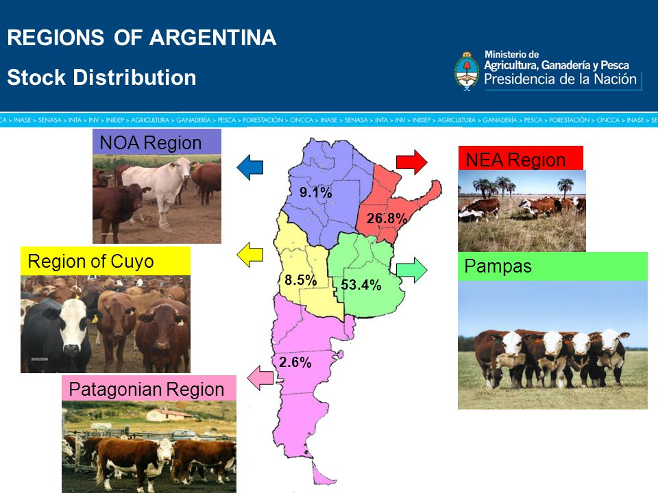 Título: Tipografía Arial / Versión: bold Cuerpo 16 a 18 / Color blanco REGIONS OF ARGENTINA Stock Distribution Pampas NOA Region NOA NEA Region Patagonian Region Region of Cuyo 53.4% 26.8% 9.1% 8.5% 2.6%