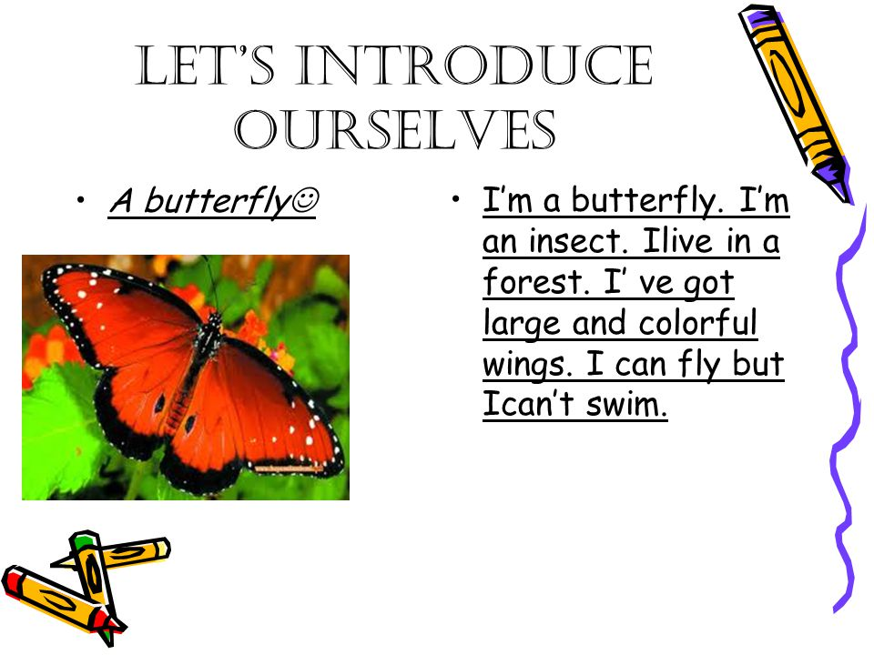 Let's introduce ourselves A butterfly I'm a butterfly. I'm an insect. Ilive in a forest. I' ve got large and colorful wings. I can fly but Ican't swim