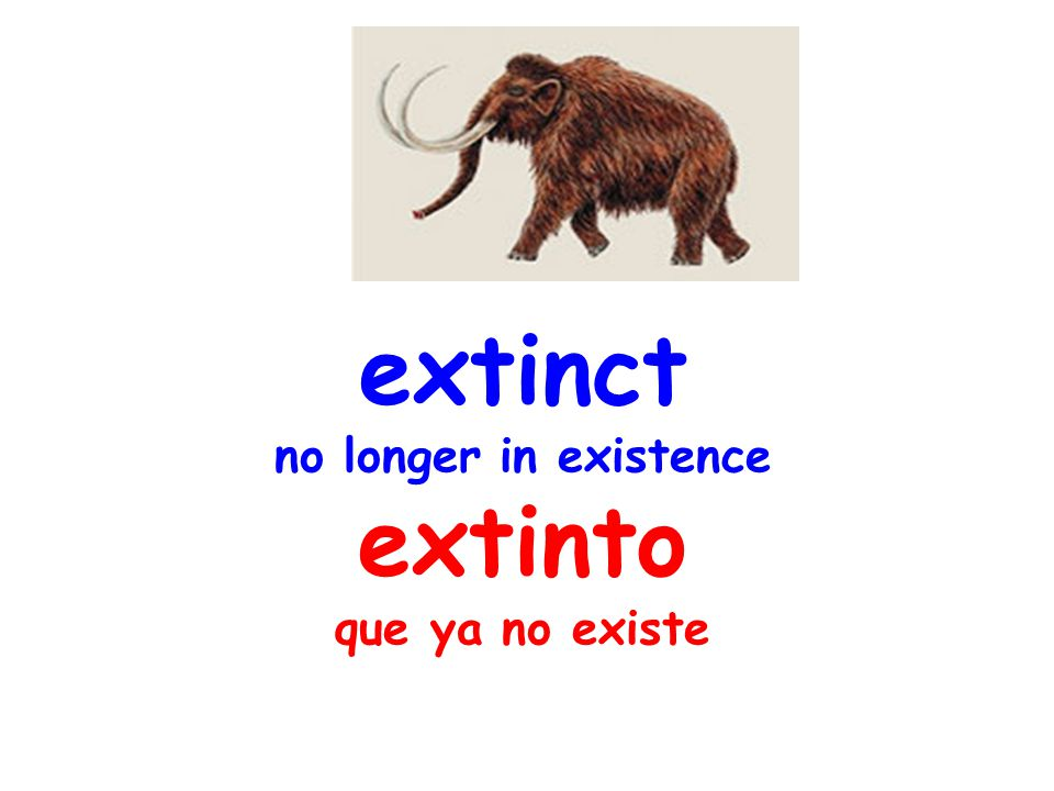 extinct no longer in existence extinto que ya no existe