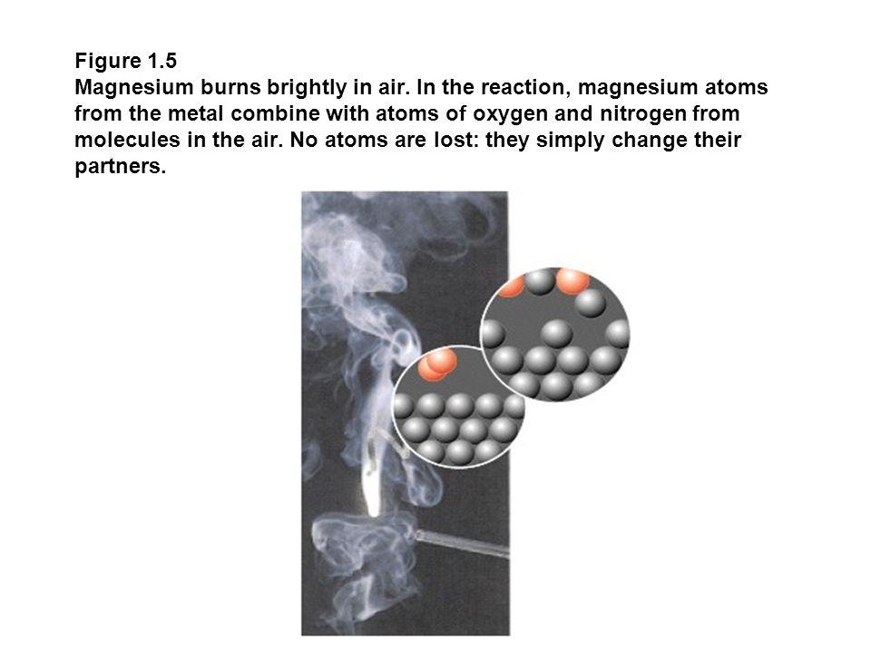 Figure 1.5 Magnesium burns brightly in air.