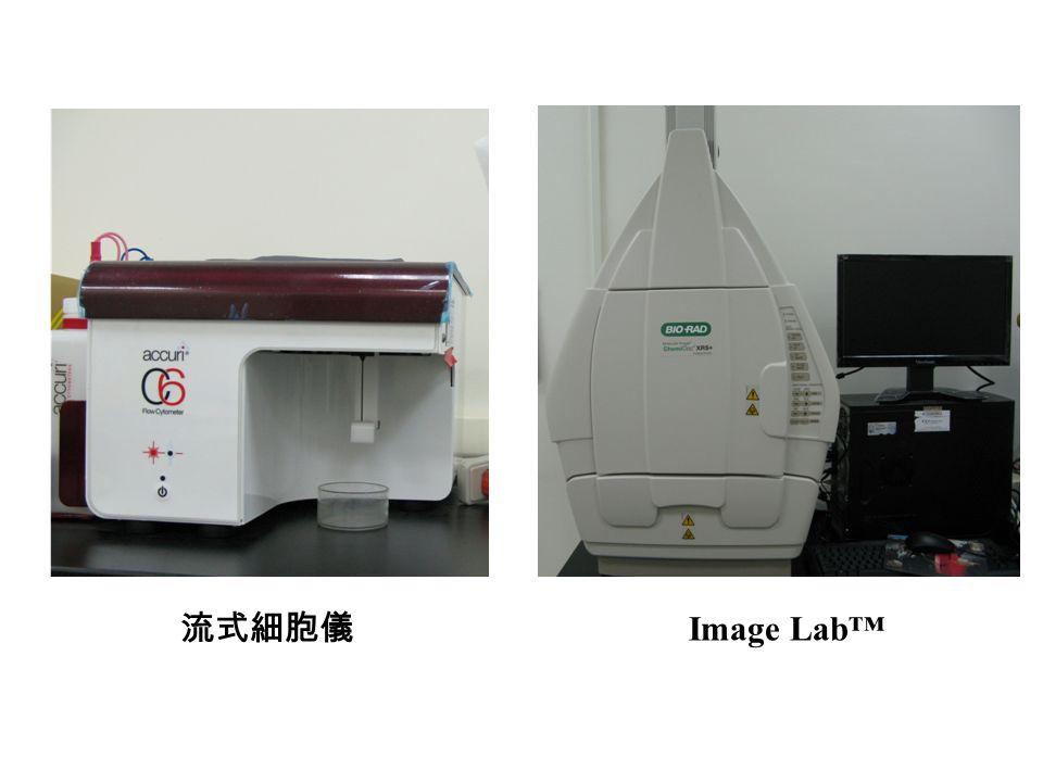流式細胞儀 Image Lab™
