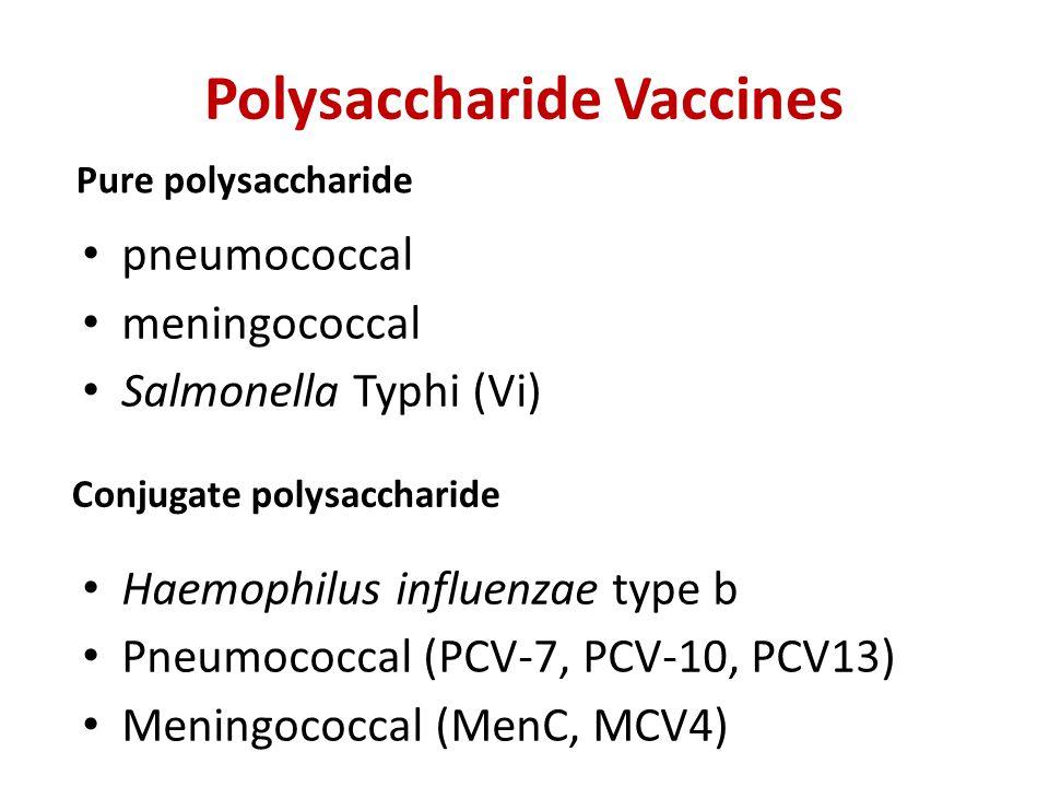 Polysaccharide Vaccines pneumococcal meningococcal Salmonella Typhi (Vi) Haemophilus influenzae type b Pneumococcal (PCV-7, PCV-10, PCV13) Meningococc