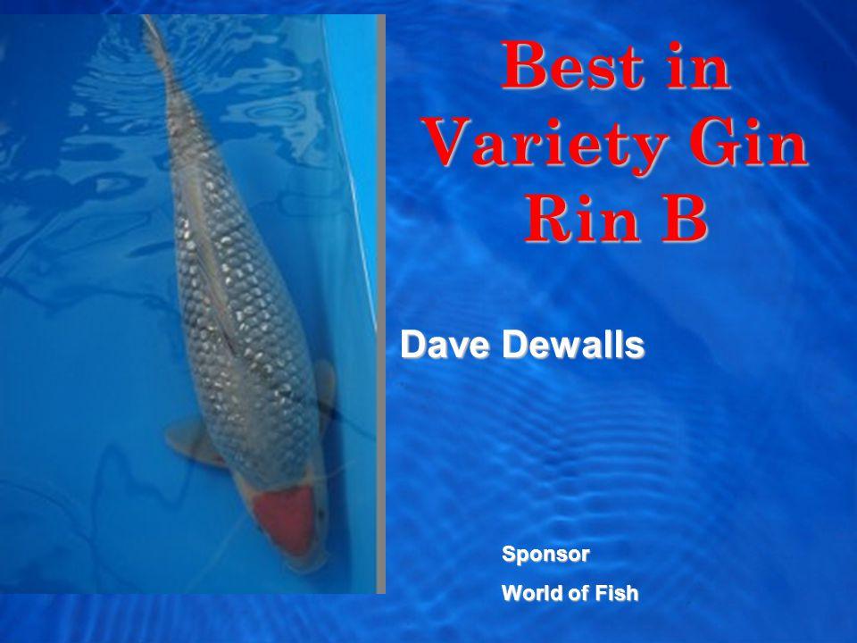 Best in Variety Gin Rin B Dave Dewalls Sponsor World of Fish