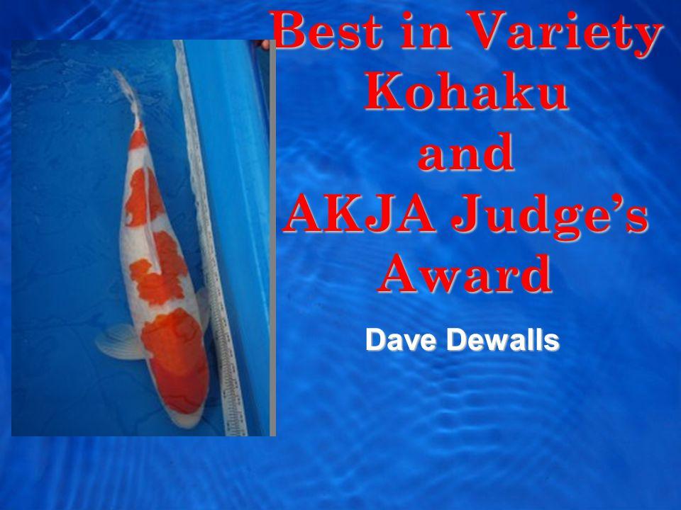 Best in Variety Kohaku and AKJA Judge's Award Dave Dewalls
