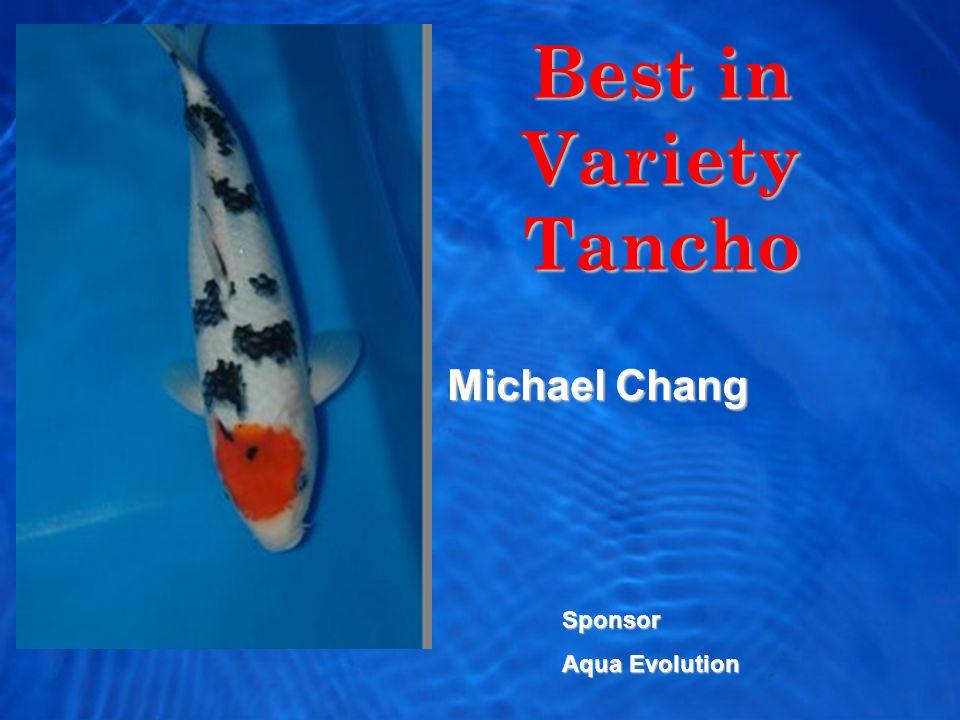 Best in Variety Tancho Michael Chang Sponsor Aqua Evolution
