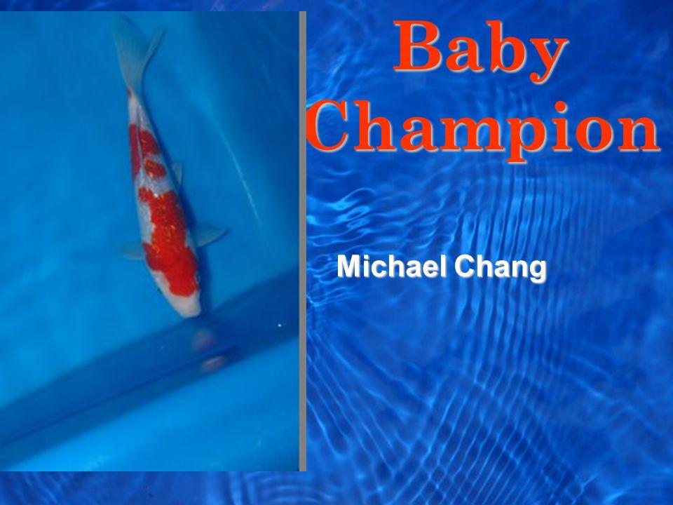 Baby Champion Michael Chang