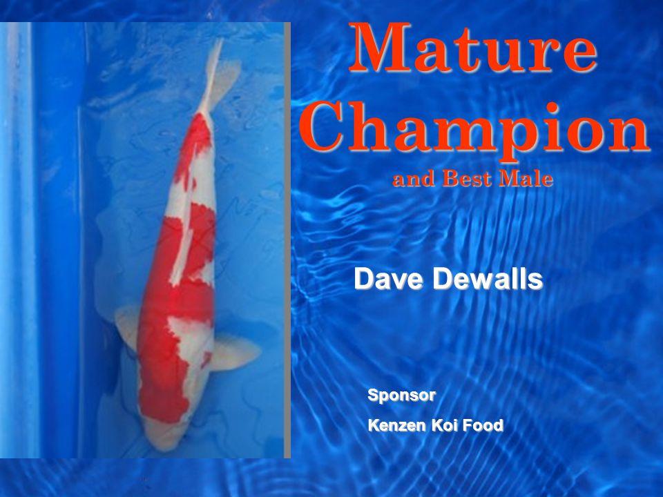 Mature Champion and Best Male Sponsor Kenzen Koi Food Dave Dewalls
