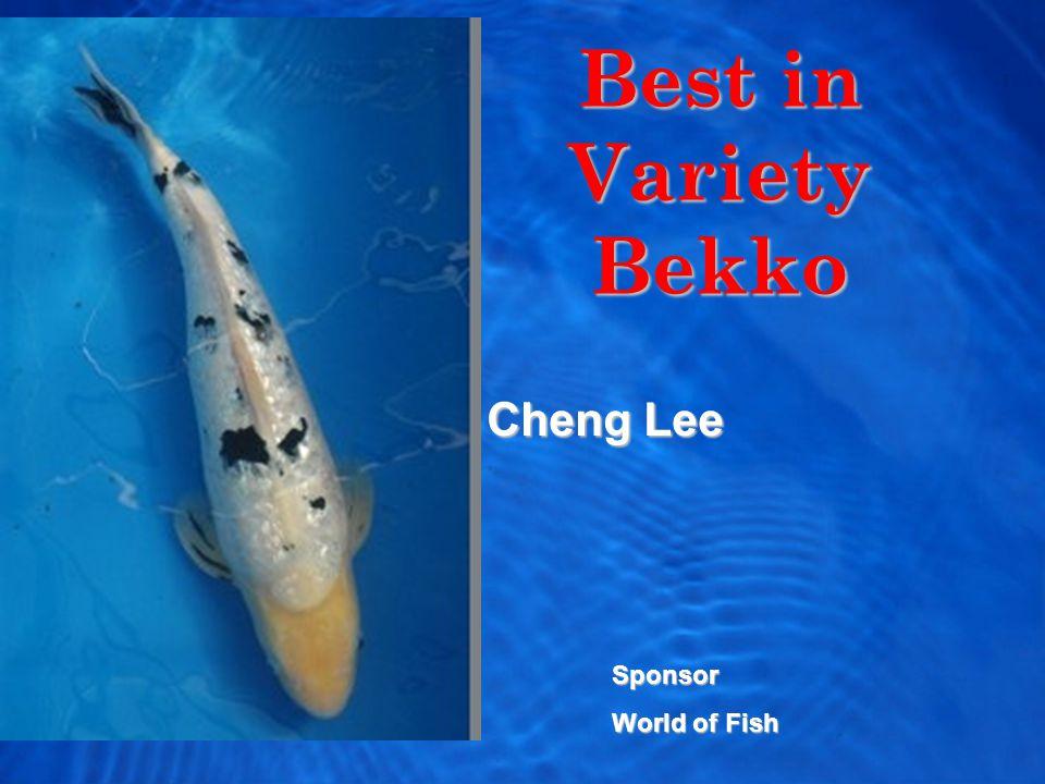 Best in Variety Bekko Cheng Lee Sponsor World of Fish