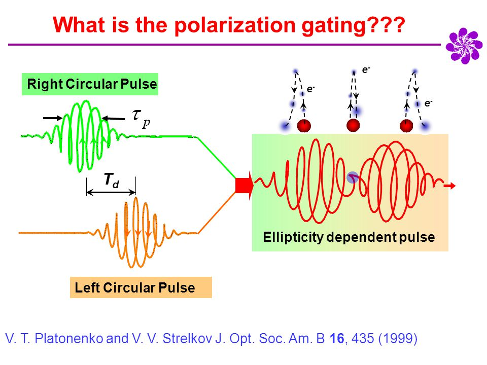 Single slit Multi-slit What do we expect to see with polarization gated input?.