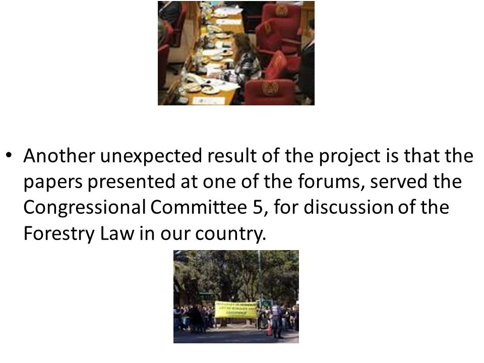 Another unexpected result of the project is that the papers presented at one of the forums, served the Congressional Committee 5, for discussion of the Forestry Law in our country.