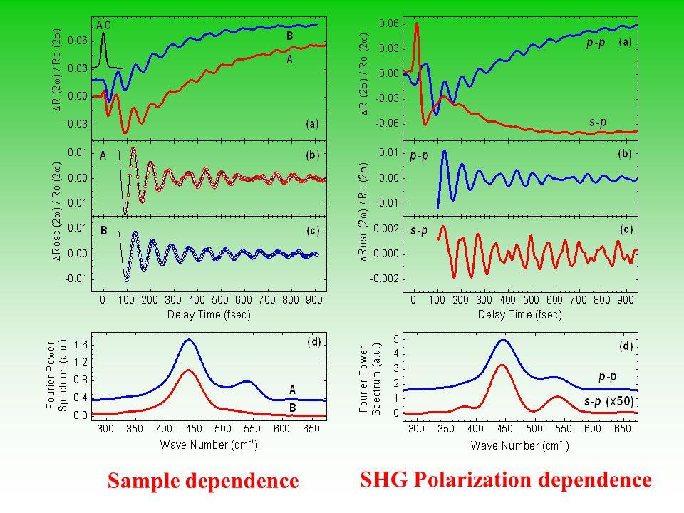 Sample dependence SHG Polarization dependence