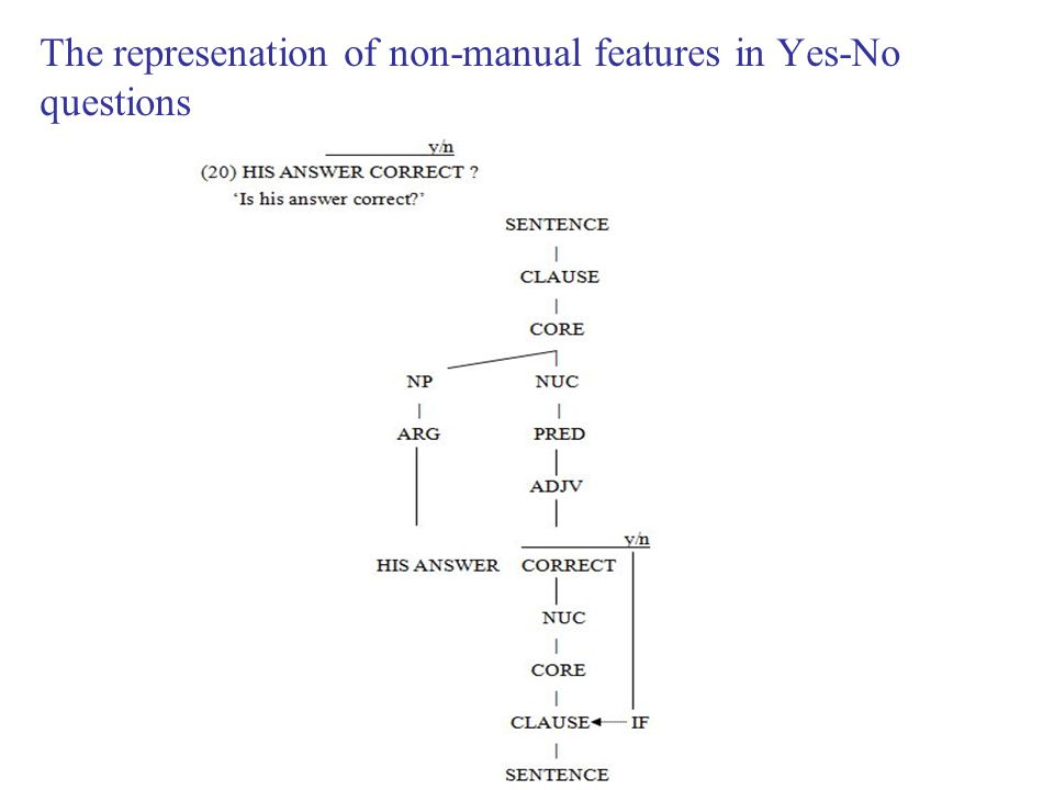 The represenation of non-manual features in Yes-No questions
